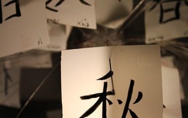 תרגום מסינית למי יכול לעזור?